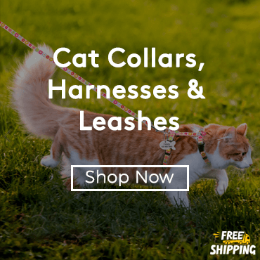 Buy Cat Collars, Harnesses & Leashes