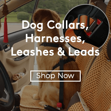 Buy Dog Collars, Harnesses, Leashes & Leads