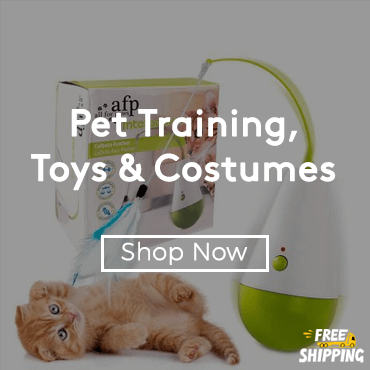 Buy Pet Training, Toys & Costumes