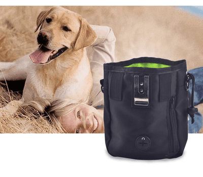 Dog Walking Handy Bag