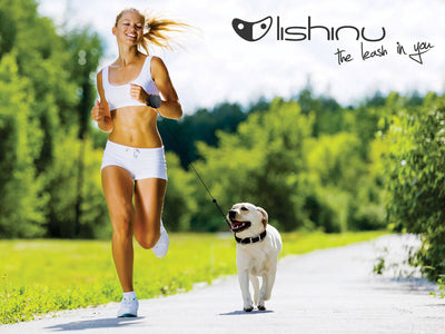 Lishinu Retractable Hands Free Bungee Dog Lead