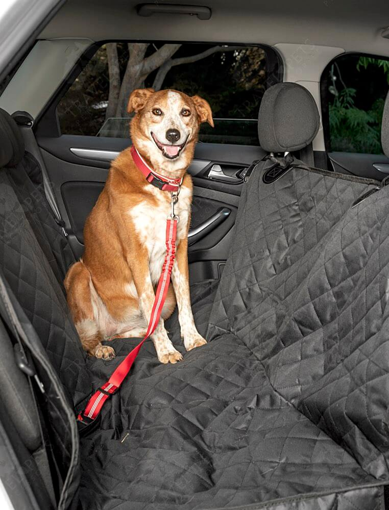 Premium Dog/Animal Rear Car Seat Cover