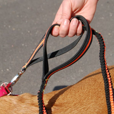$29.95 - BUNGEE STRETCHABLE DOG LEAD (3) TRAVEL PETS