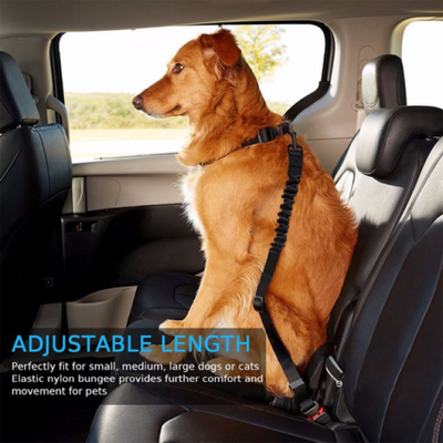 $19.99 - DOG CAR SEAT BELT - KEEPS YOUR DOG SAFE DURING CAR RIDES BUNGEE STRETCH ADJUSTABLE UP TO 80CM / GREY 0.22KG (17) TRAVEL PETS