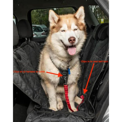$19.99 - DOG CAR SEAT BELT - KEEPS YOUR DOG SAFE DURING CAR RIDES BUNGEE STRETCH ADJUSTABLE UP TO 80CM / RED 0.22KG (2) TRAVEL PETS