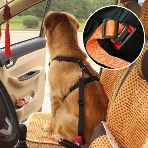 Dog Car Seat Belt Adjustable Belts In Original & Bungee - Keeps Your Dog Safe During Car Rides