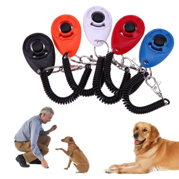 Pet Dog Training Clicker Pet Trainer Tool Key Chain
