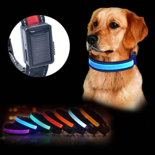Glow in the Dark Dog Collar - Night Safety Solar Charge LED