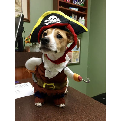 $19.99 - PIRATE CAPTAIN COSTUME FOR CATS & DOGS (6) TRAVEL PETS