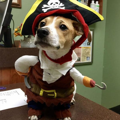 $19.99 - PIRATE CAPTAIN COSTUME FOR CATS & DOGS 0.2KG (1) TRAVEL PETS