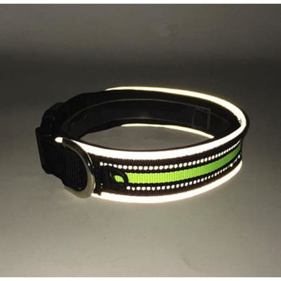 $19.75 - REFLECTIVE DOG COLLAR WITH WETSUIT MATERIAL (11) TRAVEL PETS