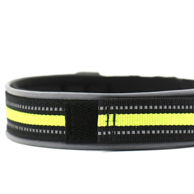 $19.75 - REFLECTIVE DOG COLLAR WITH WETSUIT MATERIAL (9) TRAVEL PETS