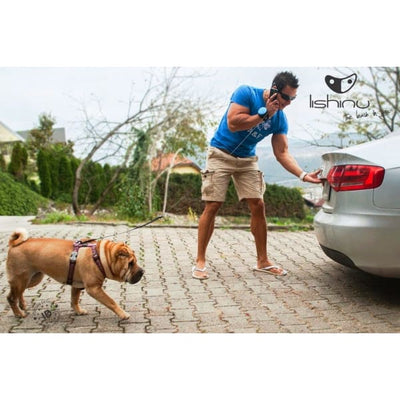 $89.00 - LISHINU RETRACTABLE HANDS-FREE BUNGEE DOG LEAD (3) TRAVEL PETS