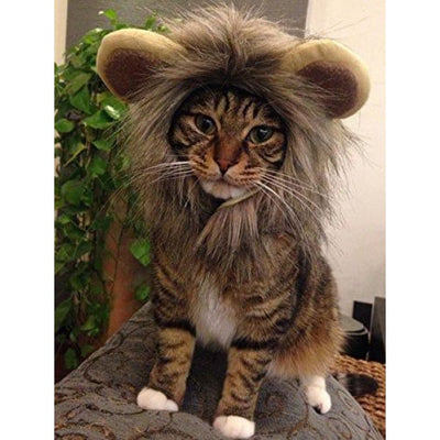 $24.95 - LION PET COSTUME (SMALL DOGS/CATS) (2) TRAVEL PETS