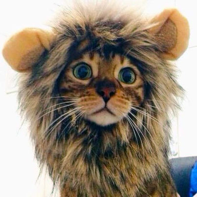 $24.95 - LION PET COSTUME (SMALL DOGS/CATS) 0.3KG (1) TRAVEL PETS