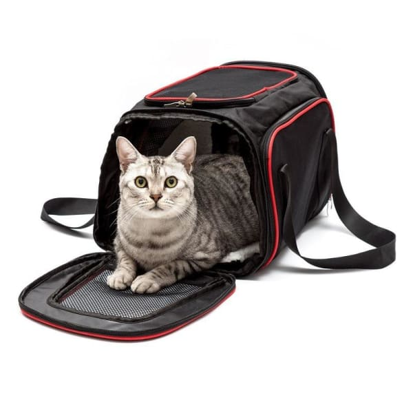 $57.50 - SMALL EXPANDABLE CAT/DOG/PET CARRIER SHOULDER BAG 1KG (1) TRAVEL PETS