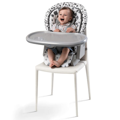 Chicco Polly Progress 5 High Chair Anthracite - Highchair chicco highchair meal pocket travel