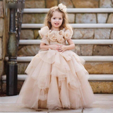 Champagne High-Quality Baby Girl Birthday Party Dress by PickAProduct