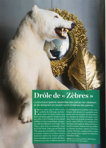Publication Le Journal de la maison ZEBRES