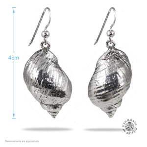 Silvered Watergate Bay Winkle Earrings
