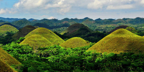 Affordable Bohol Countryside Whole Day Tour+Buffet Lunch