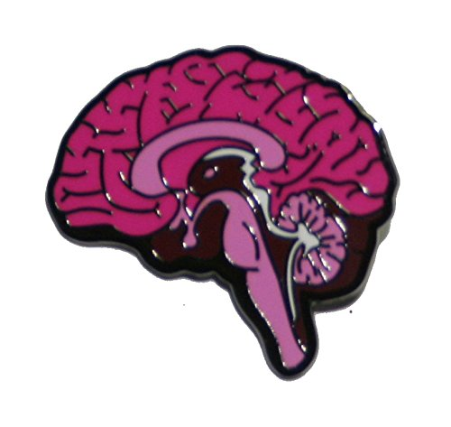 brain pin pink brain pin brain lapel pin science gift science lapel pin