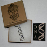 DNA key chain