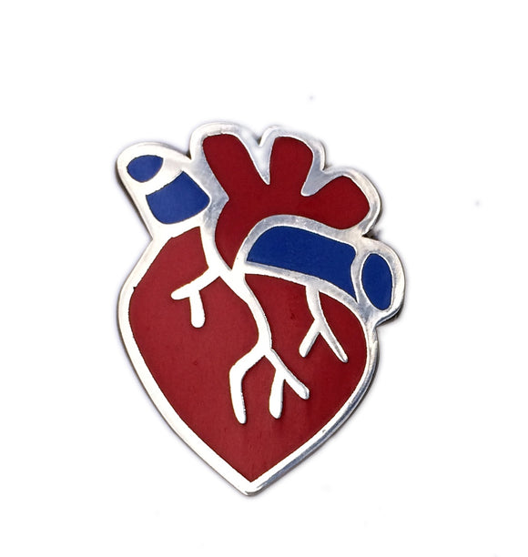 Anatomical Heart Pin Red and Blue