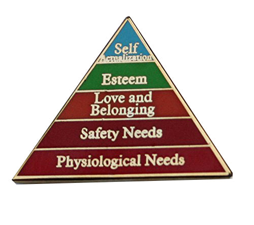 Malsow's hierarchy of needs pin