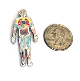Anatomy Body Pin Body Lapel Pin Anatomy Science Pin