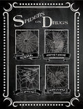 Spiders on Drugs Poster
