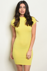 Daisy Bodycon Dress