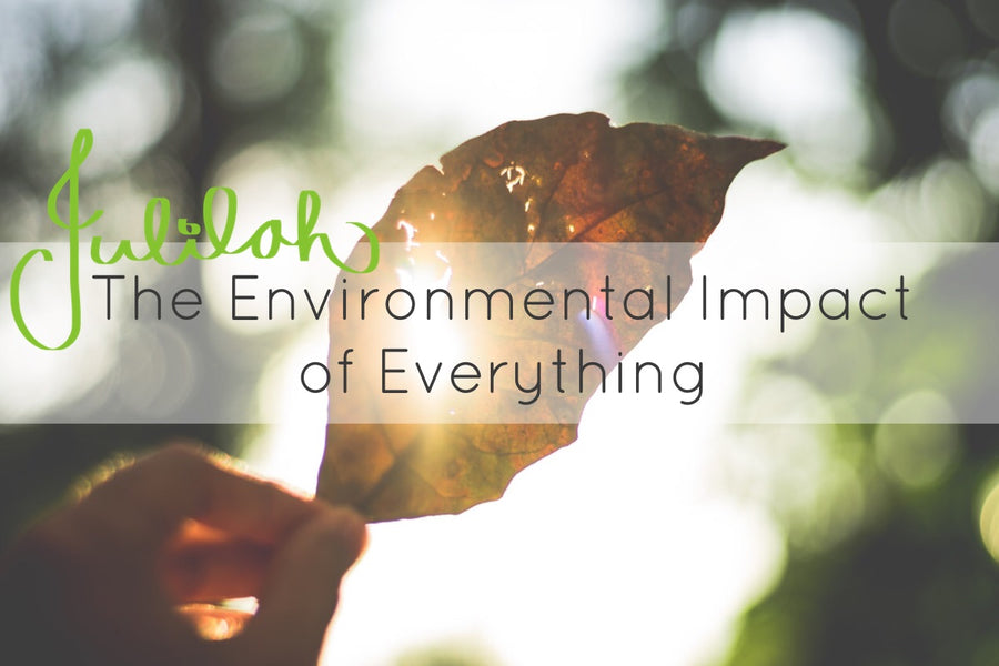The Chic Ecologist – The Environmental Impact of Everyday Things
