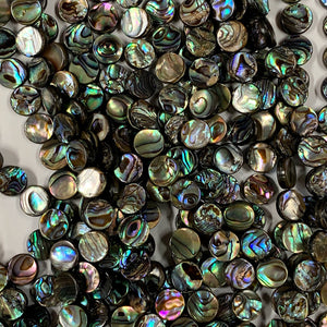 Abalone 10mm Coin