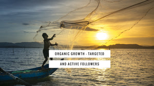 Organic Growth - Targeted and Active Followers