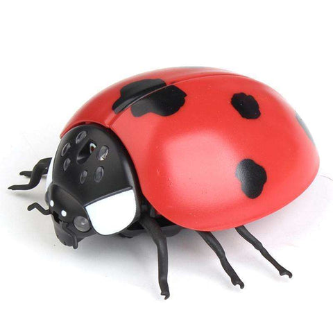 Image of RC Bee Toys Remote Control Insects