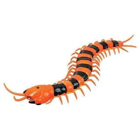 Image of New Infrared RC Remote Control Centipede Scolopendra Creepy-crawly Kids Toy Gift,Orange&Black