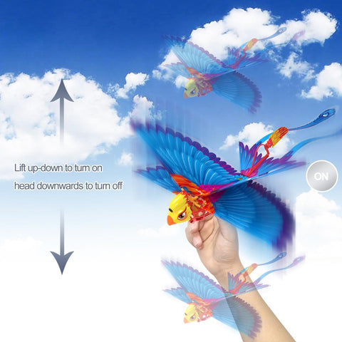 Image of Flying Remote Control Go Go Bird