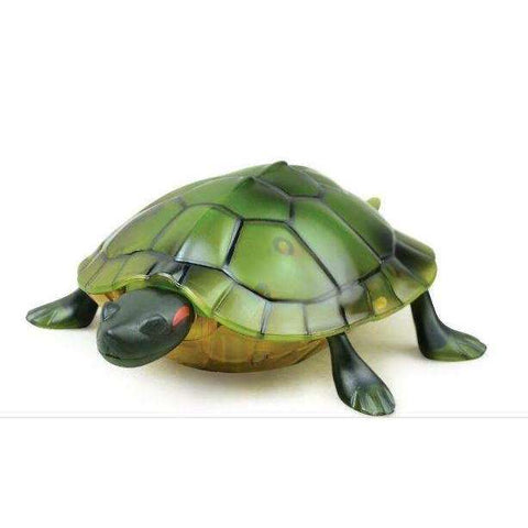Image of Pet Turtle RC Tortoise W/ Simulation Sounds & Lights