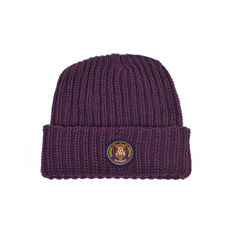 Knit Beanie - Purple