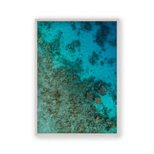 Load image into Gallery viewer, Sea Coral Reef Print - Blim & Blum