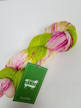 Baah Yarn Dipped & Dappled Knitting Kit