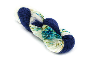 Borrowed and Blue - Baah Yarn Shasta