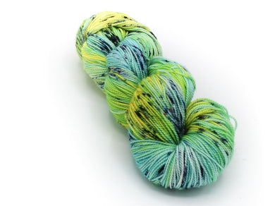 California Coast - Baah Yarn Shasta