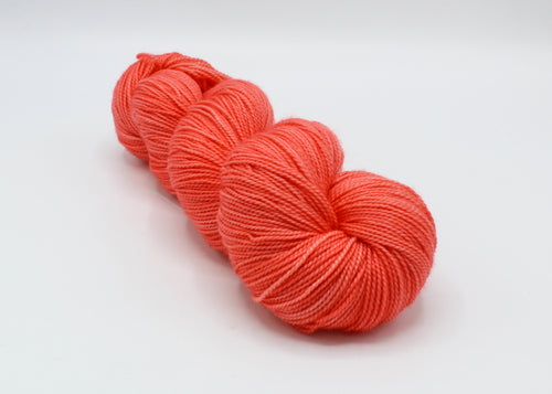 Coral Bay - Baah Yarn New York