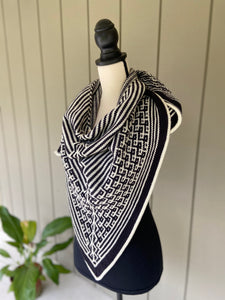 Cheryl Faust Synchronicity Shawl Knitting Kit with Baah Yarn