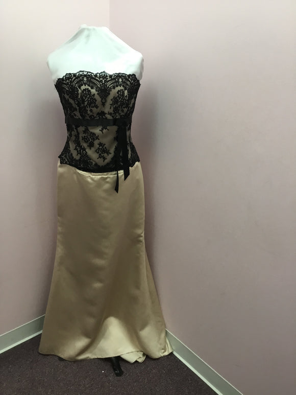 Ivory and Black Lace Gown