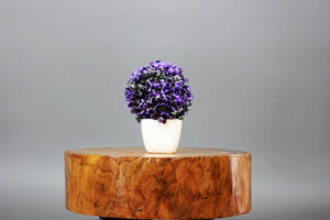 Wood Stump Low Height Table