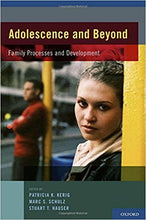 Adolescence and Beyond: Family Processes and Development 1st Edition - PDF Version