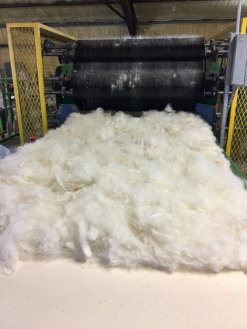 Alpaca Fleece Being Processed into Yarn for Hats